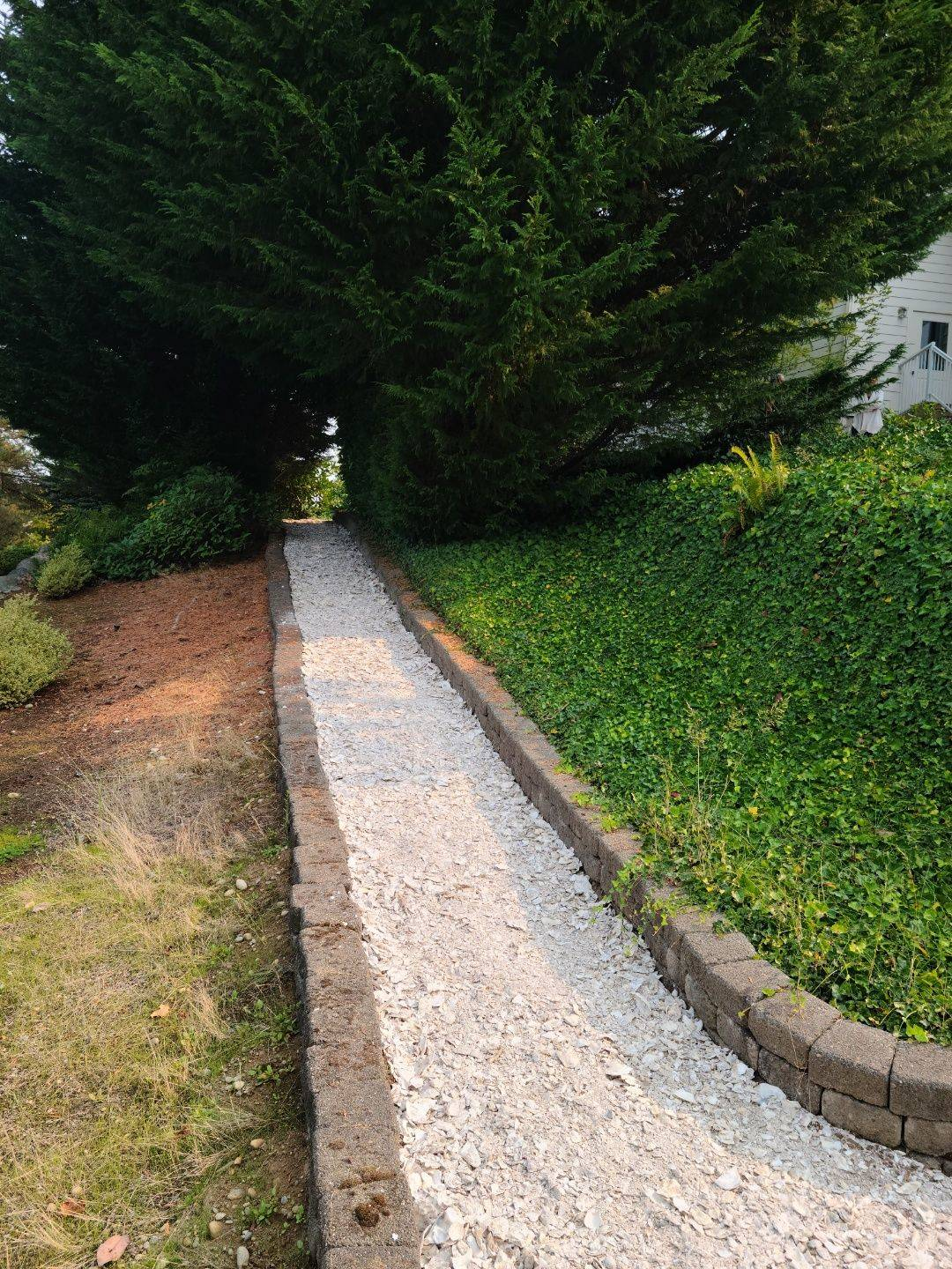 Oyster shells can be an attractive option for walking paths.